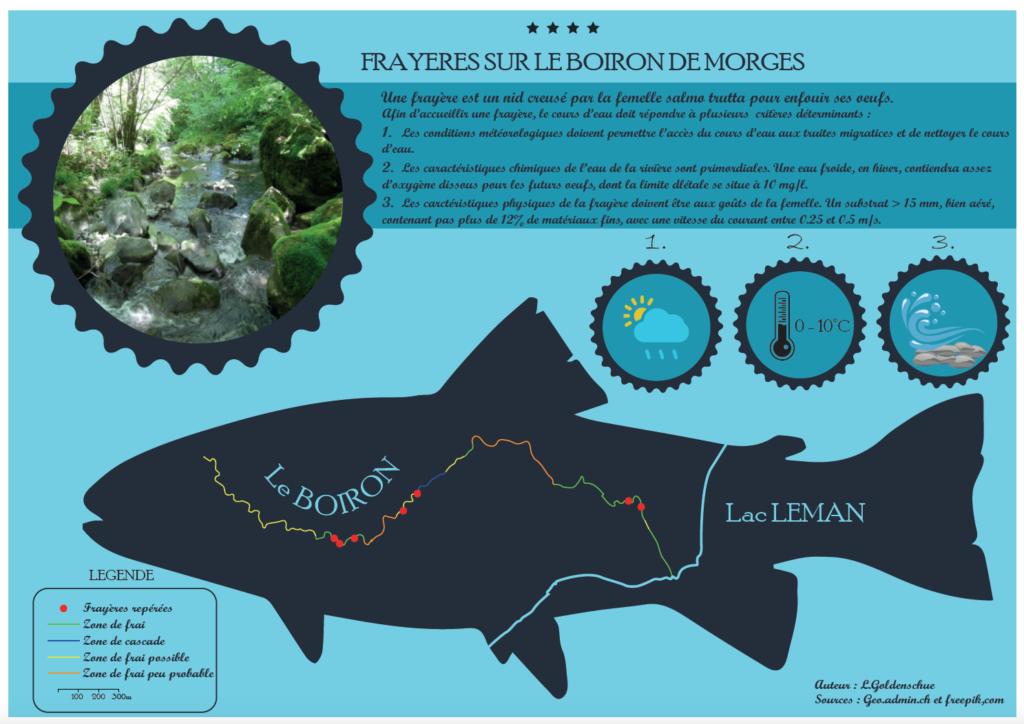 Créer une infographie pour illustrer un travail